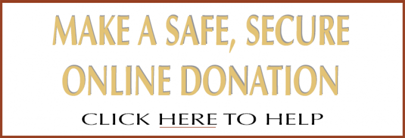 donate horizontal